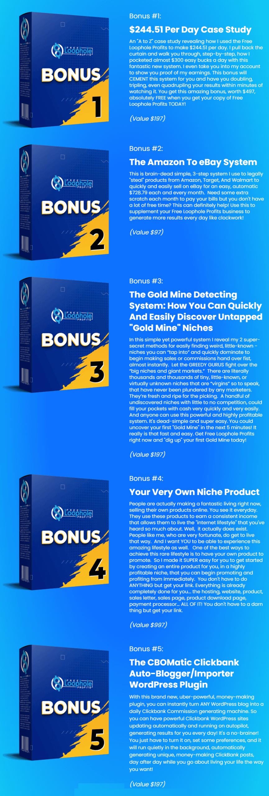 Free-Loophole-Profits-Bonus