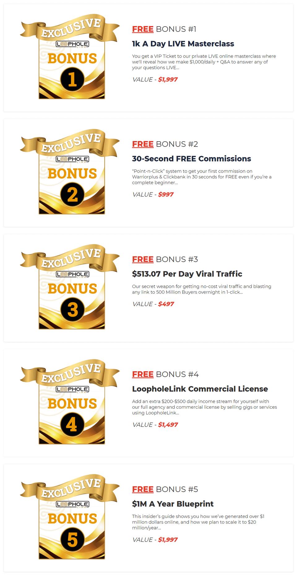 LoopholeLink-bonus